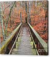 Bridge To Fall Canvas Print