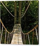 Bridge To The Forest Canvas Print