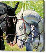 Bridled Love Canvas Print