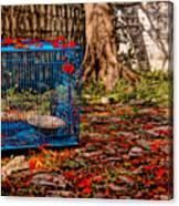 Brid's Cage Canvas Print