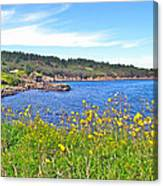 Brier Island In Digby Neck-ns Canvas Print