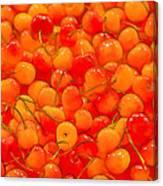 Bright And Orange Canvas Print