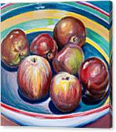 Red Apples In Striped Bowl Canvas Print