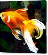 Bright Golden Fish In Dark Pond Canvas Print