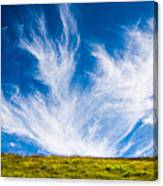 Bright Green Meadow And Deep Blue Sky Canvas Print