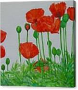 Red Poppies Colorful Flowers Original Art Painting Floral Garden Decor Artist K Joann Russell Canvas Print