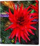 Brilliance In An Autumn Garden - Red Dahlia Canvas Print