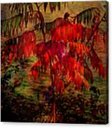 Brilliant Sumac Canvas Print