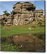 Brimham Rocks Reflection Canvas Print