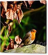 British Nature Canvas Print