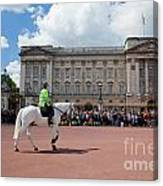 British Royal Guards Riding On Horse And Perform The Changing Of The Guard In Buckingham Palace Canvas Print