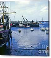 Brixham Port Canvas Print