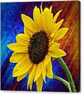 Brocade Daisy Canvas Print