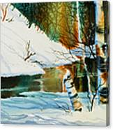 Broken Birch Canvas Print