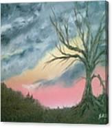 Broken Branch Canvas Print