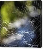 Broken Web Canvas Print