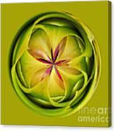 Bromiliad Orb Canvas Print