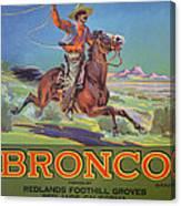 Bronco Oranges Canvas Print