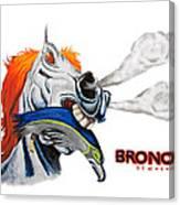 Broncos In Super Bowl Xlviii Canvas Print