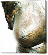 Bronze Bust 1 Canvas Print