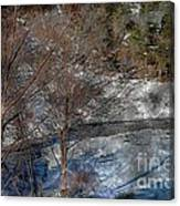 Brook And Bare Trees - Winter - Steel Engraving Canvas Print