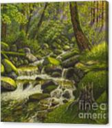 Brook In The Forest Canvas Print