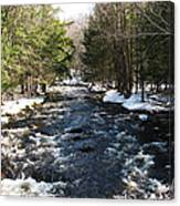 Brook In The Spring Canvas Print