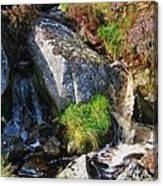 A Brook In The Wicklow Mountains, Ireland Canvas Print