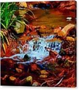 Brook Nook Canvas Print
