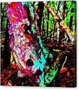 Brook Texture Z 3 Canvas Print