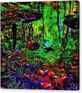 Brook Texture Z 5 Canvas Print