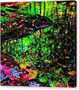 Brook Texture Z 8 Canvas Print