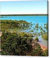 Broome Mangroves Canvas Print