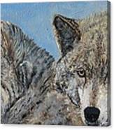 Brother And Sister Wolves Canvas Print