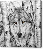 Brother Wolf Canvas Print
