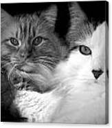 Brothers For Life Canvas Print