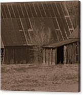 Brown Barns Canvas Print