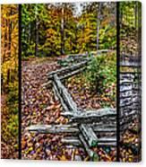 Brown County Park Canvas Print