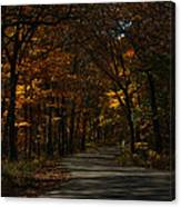 Brown County State Park Canvas Print