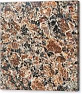 Brown Red Granite  Canvas Print