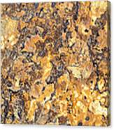 Brown Stone Abstract Canvas Print