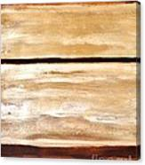Browns Thru White Tones Canvas Print