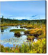 Browns Tract Inlet Waterway Canvas Print