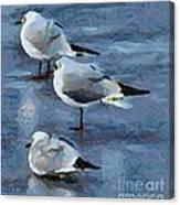 Brrr It's Cold Canvas Print