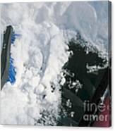 Brushing Winter Away Canvas Print