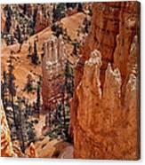 Bryce Canyon 02 Canvas Print