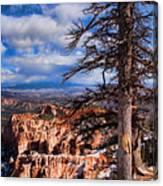 Bryce Canyon 1 Canvas Print