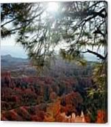 Bryce Canyon 3 Canvas Print