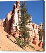 Bryce Canyon Red Fins Canvas Print
