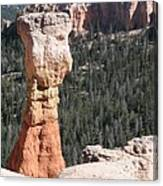 Interesting Bryce Canyon Rockformation Canvas Print